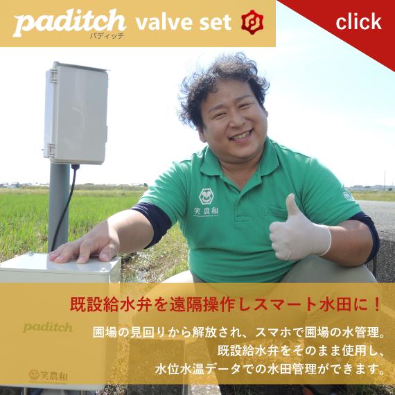 paditch_valveset