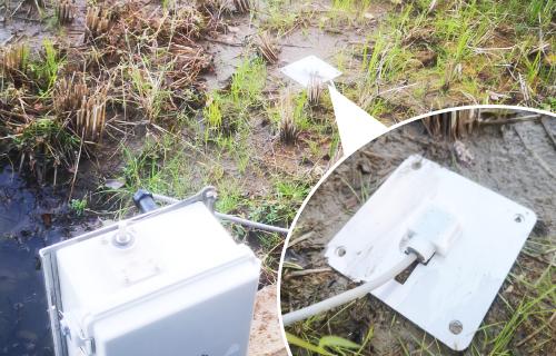 データを元に水位水温管理