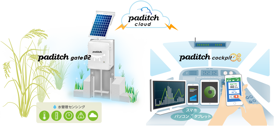 paditch systems
